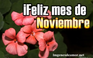 feliz-mes-de-noviembre-Feliz-mes-de-Noviembre