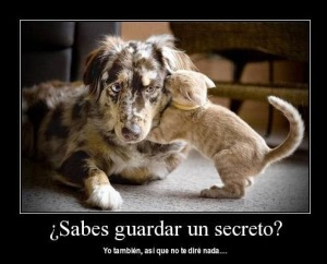 frases-con-imagenes-de-amor-secreto