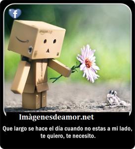 imagenes de amor con frases para compartir en facebook