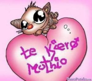 te-quiero-mucho-1124_1124