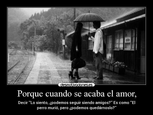 Imágenes De Amor Con Frases Se Termino El Amor Imagenes De