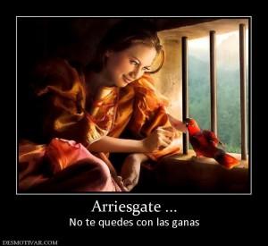 116144_arriesgate-