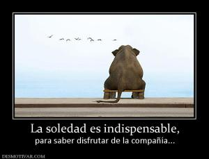 13678_la_soledad_es_indispensable