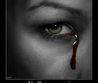 Imágenes de amor con frases no llores por mi