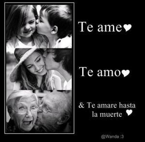 te amo-te ame - te amare