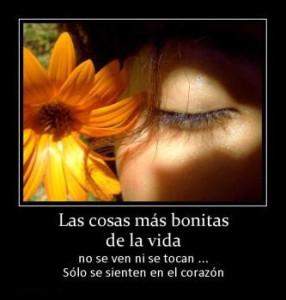 Frases con Versos Lindas, Bonitas de Amor para Mujeres-51