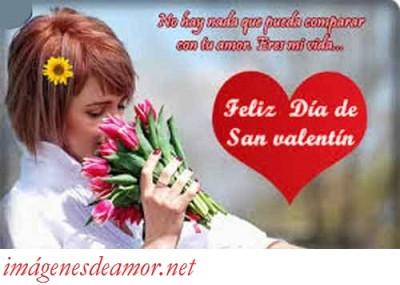tarjetas-postales-para-san-valentin-con-frases-cortas-de-amor-21