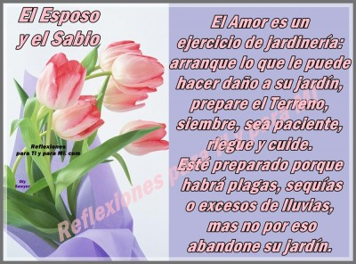 ramo_de_flores11