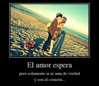 armatucoso-el-amor-espera-922484