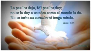 La paz les dejo, Mi paz les doy; no se la doy a ustedes como el mundo la da. No se turbe su corazón ni tenga miedo.  Juan 14:27