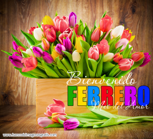 Bienvenido-Febrero-Mes-del-Amor-001