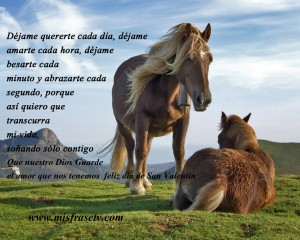 caballos-copia