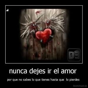 desmotivado.es_nunca-dejes-ir-el-amor-por-que-no-sabes-lo-que-tienes-hasta-que-lo-pierdes-_134046009917