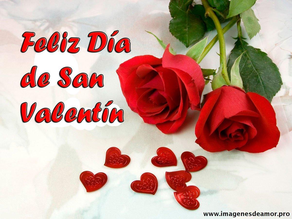 Imágenes De Rosas De Feliz 14 De Febrero