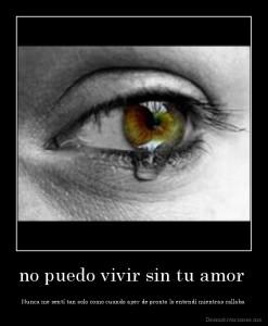 desmotivaciones.mx_no-puedo-vivir-sin-tu-amor-Nunca-me-sent-tan-solo-como-cuando-ayer-de-pronto-lo-entend-mientras-callaba-_133549195521