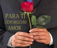 Imágenes de rosas con frases para ti amor