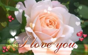 i-love-you-wallpaper-deskt