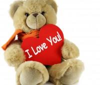 Imágenes de osos con frases i love you