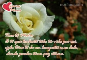 para-ti-madre-paz-eterna